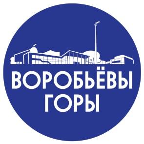 v-gory-logo